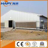 Prefab Poultry House with Poultry Equipment for Broiler Farm