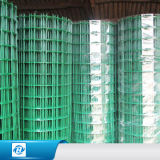 PVC/ Stainless Steel/ Galvanized Welded Wire Fencing Mesh /Panel/Netting for Building
