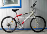 Popular Mountain Bicycle with 21speed (SH-MTB085)