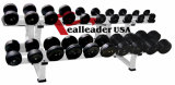 Club Use Gym Machine / Fitness Equipment for Dumbbell Rack-Double (FW-2015)