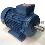 Ms7118-90W-B3 Electric Motor