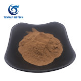 Food Nutrition Enhancer Cocoa Powder CAS 657-27-2 at Factory Price