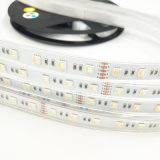 Wholesale RGBW Lighting Swimming Pool Waterproof IP68 Silicon Flexible LED Strip Light