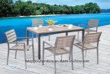 Rattan Wicker Furniture Garden Dining Table Set (TG-166)
