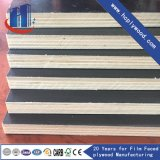 12mm Marine Plywoo/ Film Faced Plywood Cheap Priced