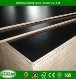 Two Times Pressed 12mm/14mm/16mm/18mm High Quality Film Faced Plywood for Construction