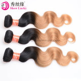 Natural Remy Brazilian Virgin Human Hair Weft Body Wave Cuticle Hold Ombre 1b/Blonde Mink Hair Products