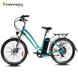Ce Cheap Green City Ebike, Rear Hub 36V 350W Motor Electric Bike with Rear Rack Lithium Battery