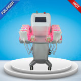 Supplier of Vertical Slimming Laser Light for Weight Loss