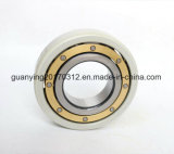 Deep Groove Ball Bearing 6224/C3vl0241