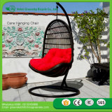 2017 Chinese Hot Supply Indoor Bamboo Swing Chair Cane Swing Hammock Hanging Pod Chair