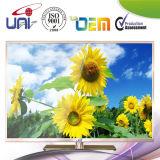 Portable Small LED Wholesale Best LED TV