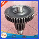 China Made Professional Customized Different Shape Gear