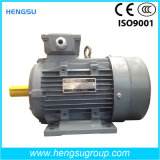 Y2 Ms Electric Three Phase Asynchronous Squirrel-Cage Induction Motors Induction Motor