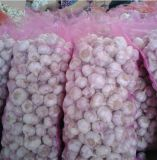 2017 China Garlic Exporter Natural Fresh Normal White Garlic Price for Sale