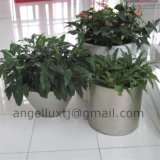 Best Quality Polish Brush Surface Garden Park Shopping Center Stainless Steel Planter Pot