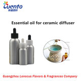 Ceramic Diffuser with Illy Steen Essential Oil / Fragrance Oil