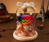 Wholesale Yunnan Crystal Preserved Rose Flower Gifts for Veterans Day
