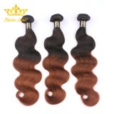 Ombre #1b/Brown 100% Remy Brazillian Human Hair with Body Wave