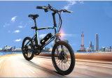 "20"" Electric Bike Bicycle"