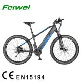 27.5 Inch Electric Mountain Bike with Big Power