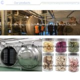 Sanitary Freeze Dryer Food Processing Machine for Agricultural/Dairy/Vegetable/Fruit/Snack/Rice/Farm/Meat