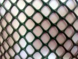 Extruded Poultry Farming Plastic Mesh