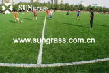 50mm Sports Football Artificial Grass (SUNJ-AL00008)