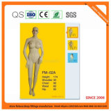 High Quality Mannequins with Good Price 9151