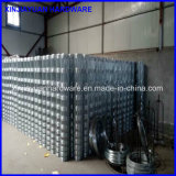 Hinge Joint Galvanized Iron Wire Cattle Fence Wholesale
