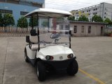 2 Seater Hot Sale Battery Operated Utility Golf Cart with Cargo Carrier