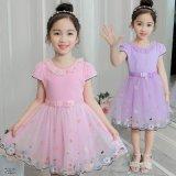 Hot Sale Cheap Children Beauty Dress Stock for Summer (H20-9)