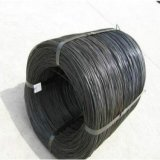 SAE 1006 1008 1012 1015 10181 Steel Wire Rod Stainless Steel