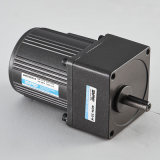 AC Motor 25W Induction Adjustable Speed Reducer Direct From Factory DPG Gear Motor