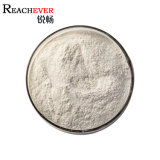 Factory Supply Wheat Gluten Powder Food Additives Vital Wheat Gluten with Halal