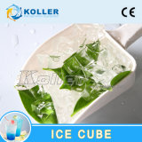 10 Tons Commecial Ice Cube Machine for Ice Plant