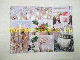 Transfer Printing Placemat Christmas or Easter
