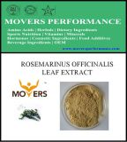 Hot Slaes Cosmetic Ingredient: Rosmarinus Officinalis Leaf Extract