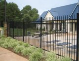 American 6ftoo*8foot Powder Coating Wrought Ornamental Iron Fence/Wrought Iron Fencing