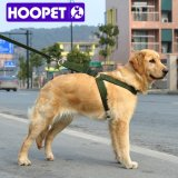 Hoopet Army Green Retractable Pet Dog Leash Collar Accessories Wholesale China