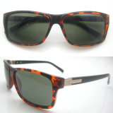 New Arrived Stylish Design PC Sun Glasses with CE Certificate