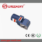 120W 90mm Worm Gear Angle Motor for Car