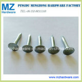 "3.0mm*1"" Electro Galvanized Clout Nail / Roofing Nail"