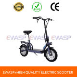 350W Geared Motor Electric Scooter