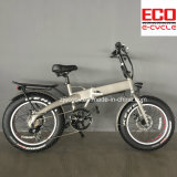 Folding Bike with Lithium Battery Electric Foldable Bicycle