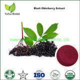 Best Elderberry Sambucus Extract Anthocyanins 5-25% Supplement