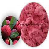 Pure Natural Red Bayberry Juice Extract Powder
