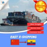 Cheap Sea Shipping Freight From Guangzhou to Esmeraldas