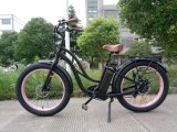 Electric Bike with Fat Tyres for Snowy Road