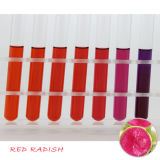 Natural Pigment Radish Red Color